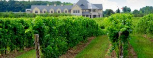 wineries for sale paso robles